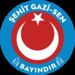 logo_bayindir 15x15