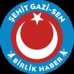 logo_birlikhaber 15x15